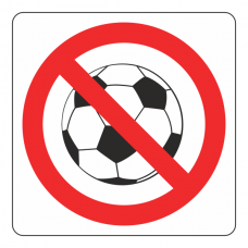 No Ball Games Logo Sign