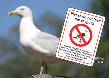 Seagull Safety Signs