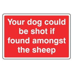 Your Dog Could Be Shot If Found In Sheep Sign (Large Landscape)